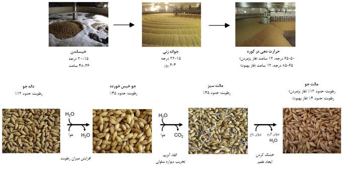 مراحل مالت سازی